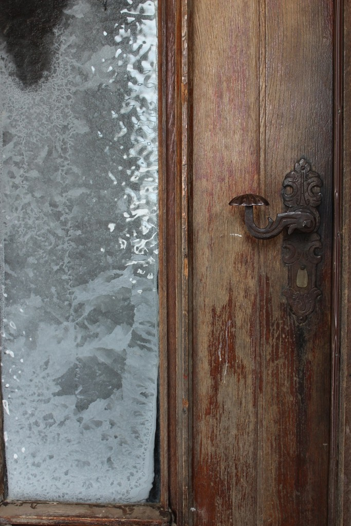 Image for titled: The Old Oak Door