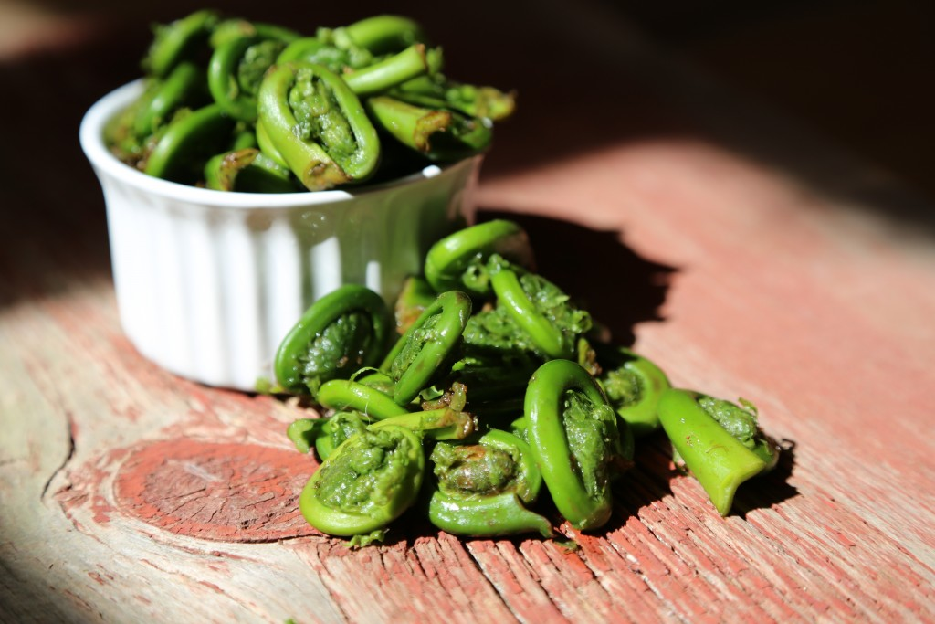 Image for titled: Fiddleheads!