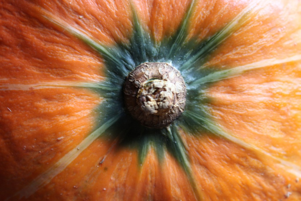 Image for titled: Squash Challenge: Orange Kabocha