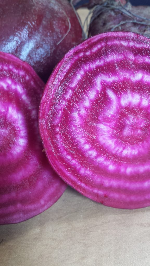 Stripy Chioggia beet. Isn't it pretty?