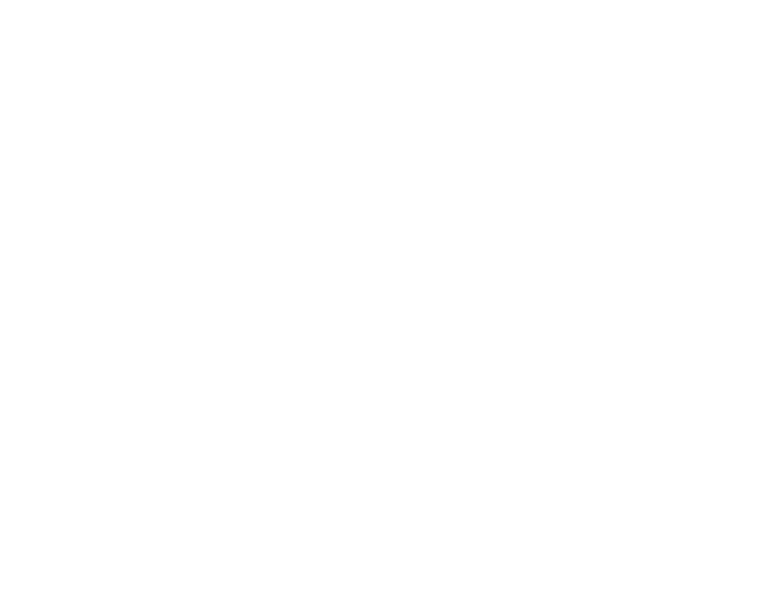 Pfenning's White Logo
