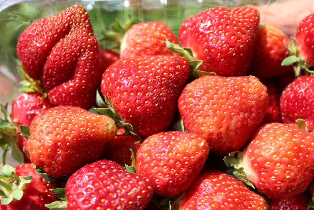 Image for titled: Strawberry Season is Upon Us!