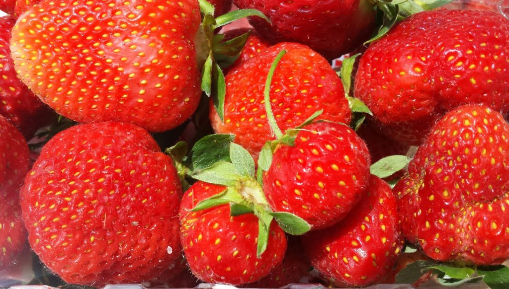Image for titled: We LOVE Local, Organic Strawberries!